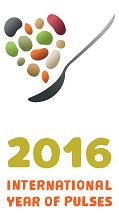 IYP 2016 logo