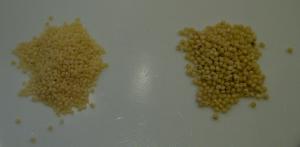 Foxtail/xiaomi (l.), proso (r.)